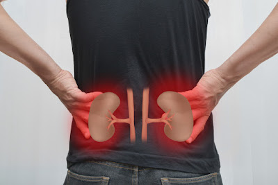 Habits That Are Damaging Your Kidney