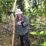 Devant une chenille d'Ornithoptera croesus. Pulau Bacan (Moluques, Indonésie), 8 septembre 2013. Photo : Eko Harwanto