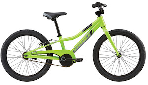 Cannondale Boys SS, 20