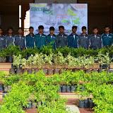 Gurukul Green Revolution (4).jpg