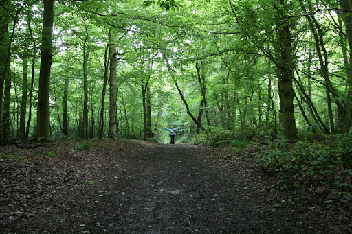 0905 046 Effingham, Surrey, England