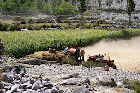 Harvest time in Ghizer