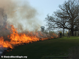 Managed prairie burn at Cordova Park, Marion County, IA