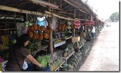 Tupi Fruit Park 2