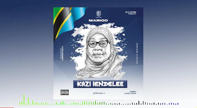 Audio: Marioo - Kazi iendelee || Mp3 Download