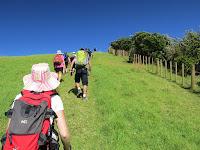 2016_NZAutumnTrip_IMG_0116.jpg