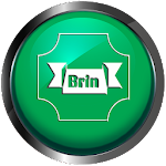 Brin - Icon Pack Icon