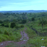 Prairies. Colider (Mato Grosso, Brésil), 12 février 2010. Photo : Cidinha Rissi