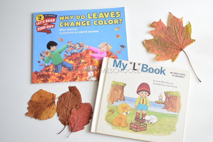 Why Do Leaves Change Color Book Activities | Coloring Pages