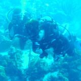 Bonaire 2011 - PICT0122.JPG