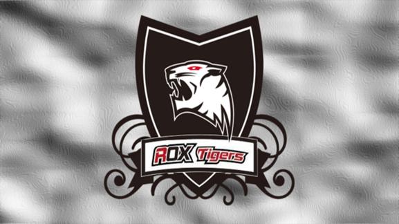 rox-tigers