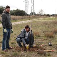 Plantación de Alcornoques con Julio García -1 19 de diciembre de 2010