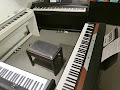 Tasteninstrumente, E-Pianos und Keyboards