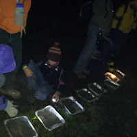 Night Hike 2011 - 20111119_015100.jpg