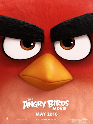 Phim Những chú chim giận dữ - The Angry Birds Movie (2016)