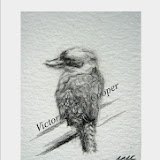 k kookaburra  (Copies available)