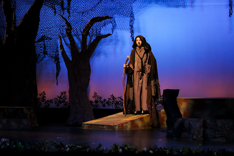 2014 Into The Woods - 38-2014%2BInto%2Bthe%2BWoods-8934.jpg