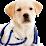 my pet guarderia's profile photo