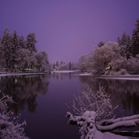 Home For Christmas by Teri Garrison-Kinsman - Landscapes Waterscapes ( winter, riverside, waterscape, christmas, waterscapes, river )