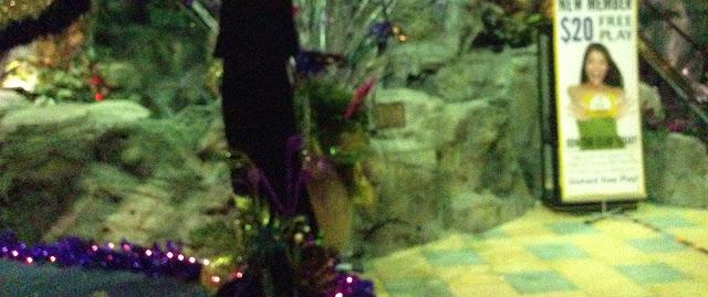 Mardi Gras New Year - IMG_0039.JPG