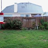 Gardening 2011 - 115_0410.JPG