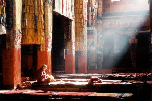 Buddhist Monk Meditation, Yoga And Meditation