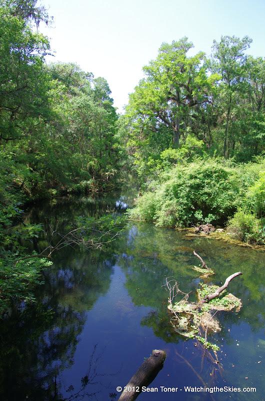04-04-12 Hillsborough River State Park - IMGP9662.JPG