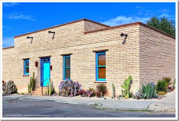 151229_Tucson_0007