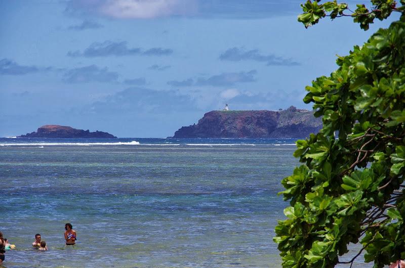06-25-13 Annini Reef and Kauai North Shore - IMGP9335.JPG