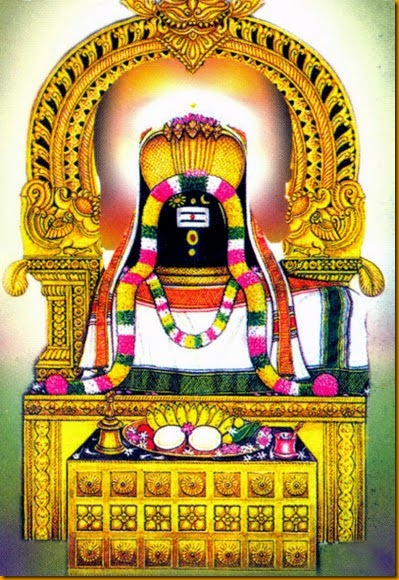 thirucherai s
