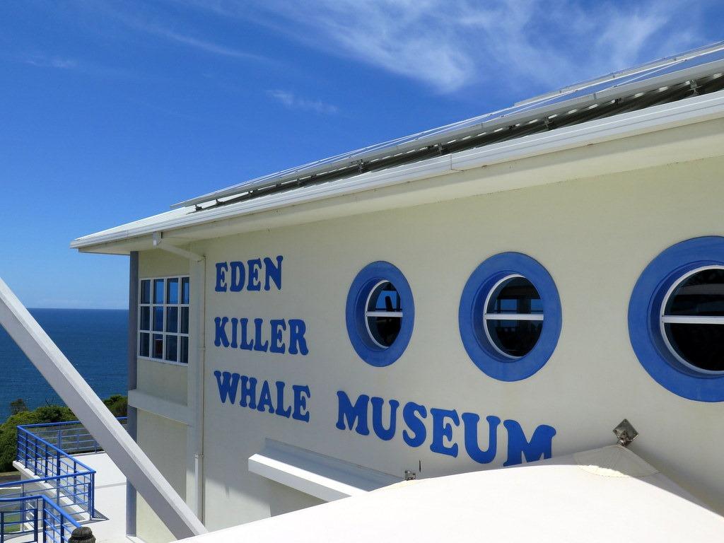 [171122-111-Eden-Killer-Whale-Museum3]