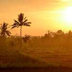 zachód słońca na trasie Pura Tirta Empul - Kintamani
