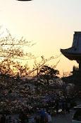 150328_teratsudo_061.jpg