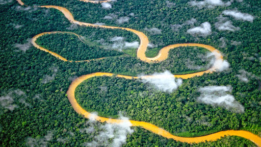 Aerial View of a Meandering River, Manu National Park, Peru.jpg