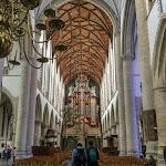 20180623_Netherlands_Olia_047.jpg