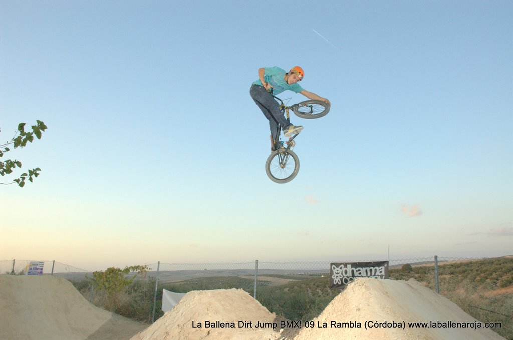 Ballena Dirt Jump BMX 2009 - BMX_09_0159.jpg