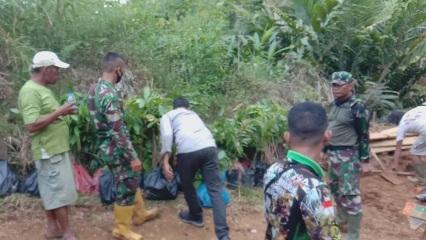 Sukarela Bagikan Bibit  Tanaman Kepada Warga Desa  Siuhom, TMMD Kodim Tapsel