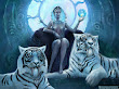 Tigers Goddess