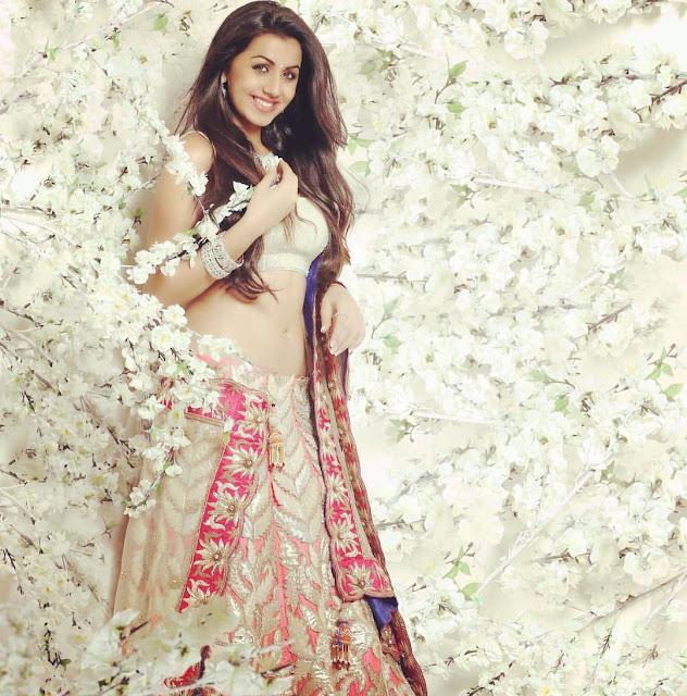 Actress Nikki Galrani hot sexy Naval