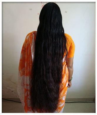 pure indian long hair silky bun,ponytail nice to watch
