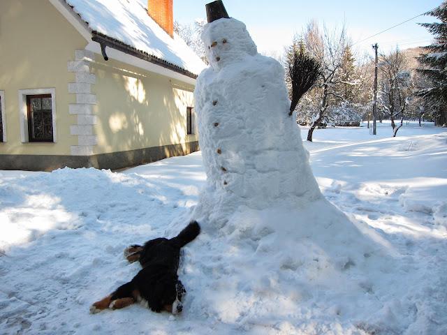 Zima-winter - IMG_0344.jpg