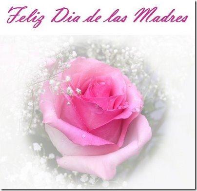 Feliz Dia De Las Madres Flores Frases Amor