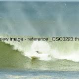 _DSC0223.thumb.jpg