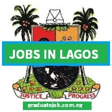 JOB VACANCY! Lagos State Government is recruiting for contract Digitizers.