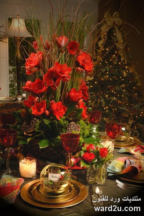 ورود حمراء فى استقبال عام جديد