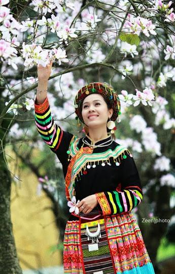 hoa ban trang moc chau pystravel008 Tháng Ba lên cao nguyên ngắm hoa ban trắng Mộc Châu