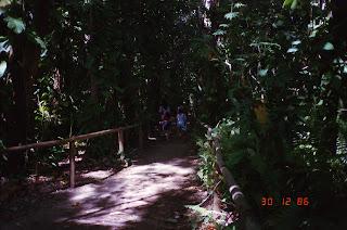 1220Queens Gardens