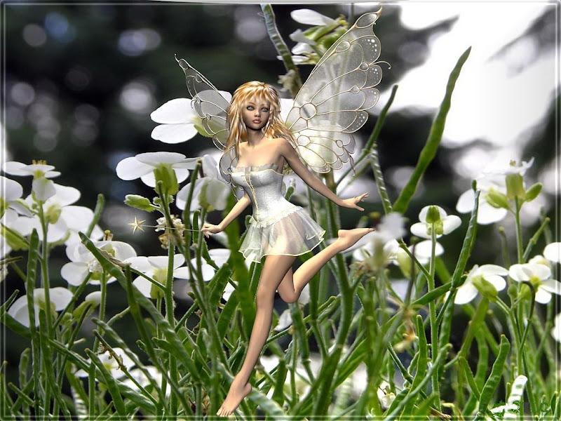 White Fairy On Flowers, Fairies Girls