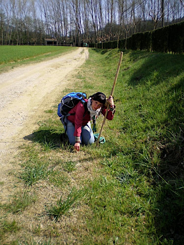 Campaments Amb Skues 2007 - ROSKU%2B143.jpg
