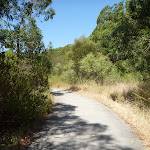 Footpath near Green Point Drive in Green Point Reserve (402868)